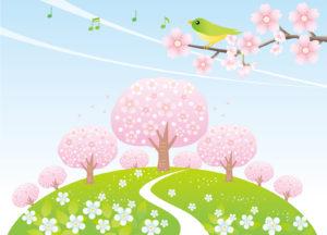 桜でお花見イラスト